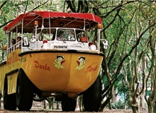 $2 For Singapore Ducktours Toddler Pass